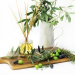 Thyme and olive leaf fragrance diffuser