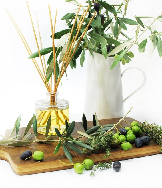 Twig-and-feather-diffuser-thyme-olive-leaf-style