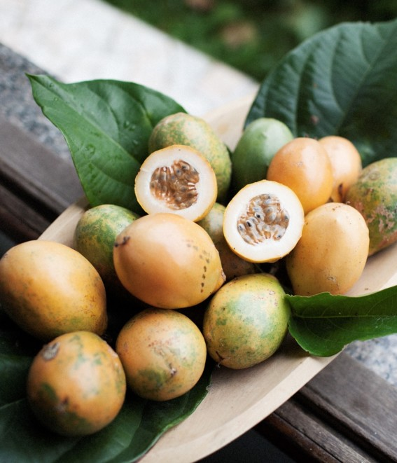 Twig-and-feather-passionfruit