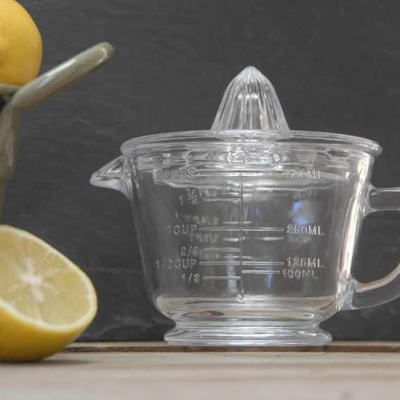 Twig-and-feather-glass-citrus-juicer-measuring-jug